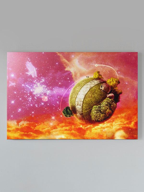 lienzo dragon ball planeta kaio