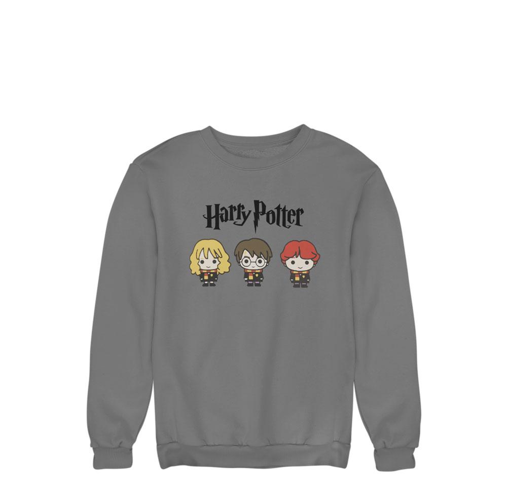 Sudadera protas Harry Potter gris